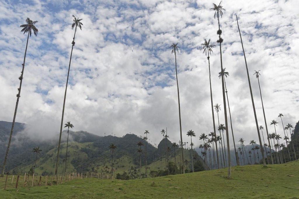 Lugares turisticos de Colombia